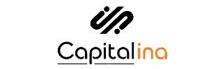 Логотип МКК Капиталина